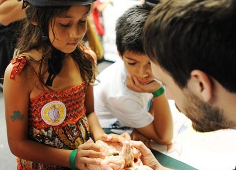 A young man holds out a model of the brain towards two children.