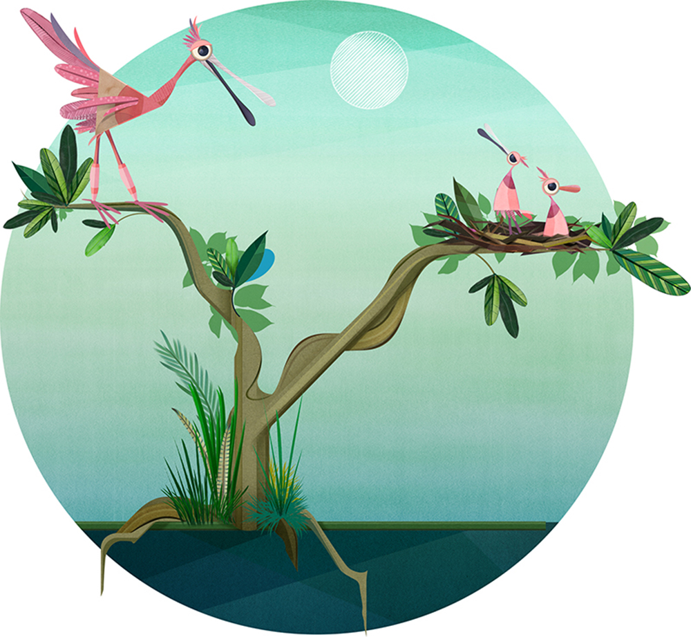 An illustration of an adult Roseate Spoonbill and two offspring in a tree.