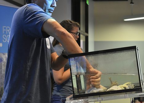 A Frost Science Fellow demonstrates his research experiment to an audience.