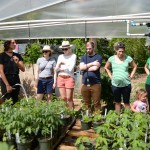 Guests learning how to care for their new plants at the gardening workshop.