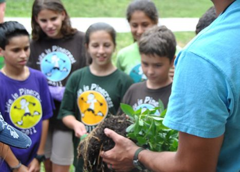 Students listen as a MUVE representative demonstrates proper planting technique with a small tree.