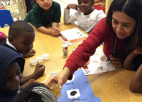 A teacher utlizes the curriculum she learned and brings an experiment back to the children in her classroom.