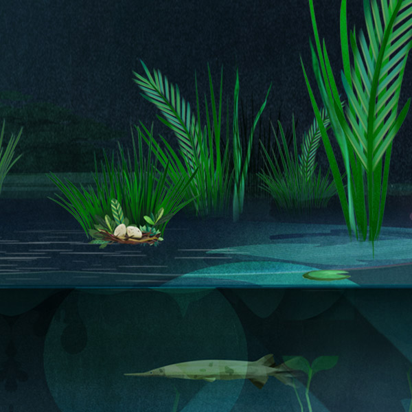 An illustration of a Florida gar swimming among marsh grasses at night.