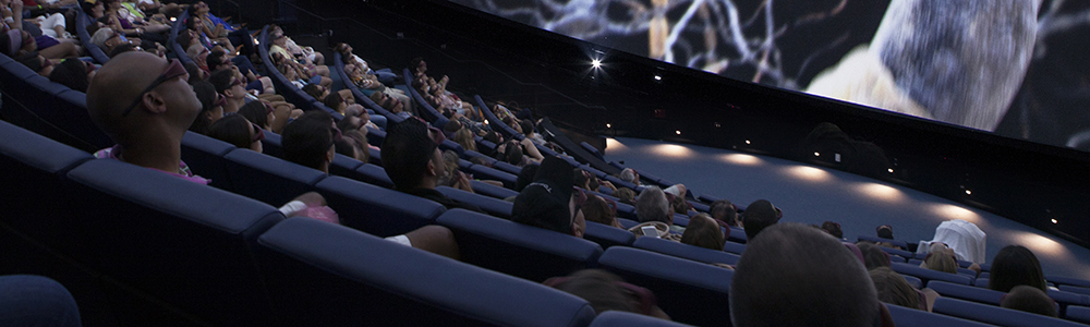 Group of people watching a 3-D show