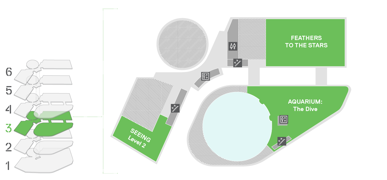 A map depicting the third floor of the museum shows the location of the Feathers to the Stars Exhibit, the Aquarium Dive Level, and a Special Exhibitions wing.