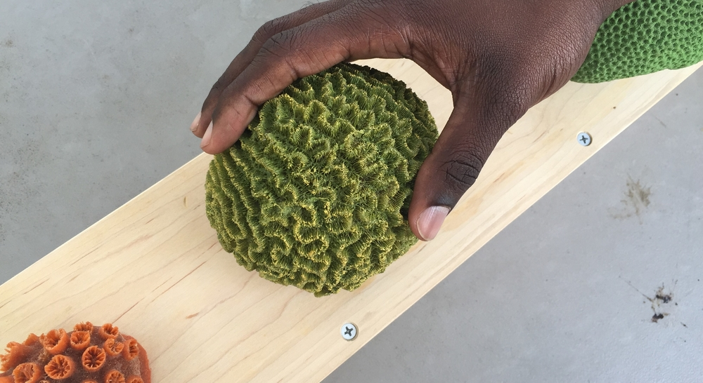 Hands touching a green coral at the 10th Annual All Kids Inclusive event presented by the South Miami-Dade Cultural Arts Center.