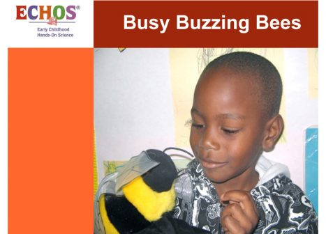Young boy playing with a bee stuffed animal