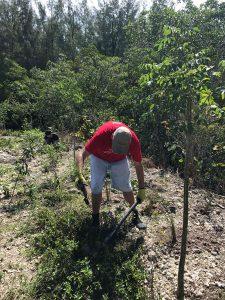 Everyday Citizens: Mangrove Mike