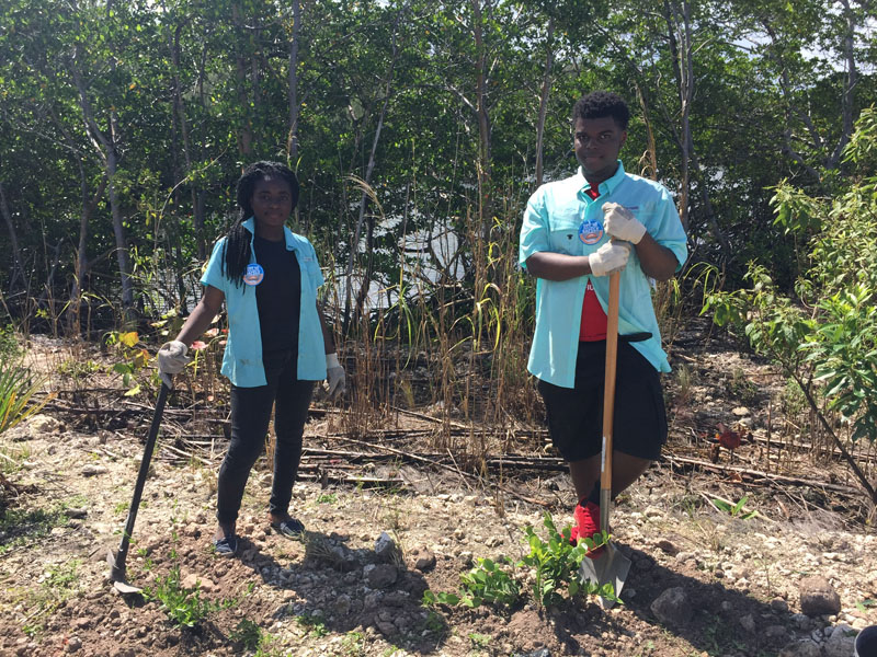 Two young adults planting