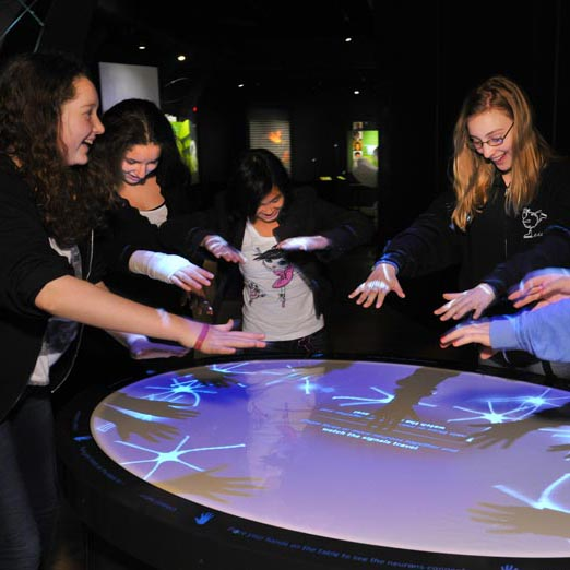 Girls using the Brain Neuron Gesture Table