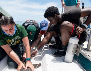 Catch Shark: Upward Bound Students 10