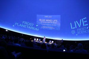 Rewind Look Back: Planetarium 5