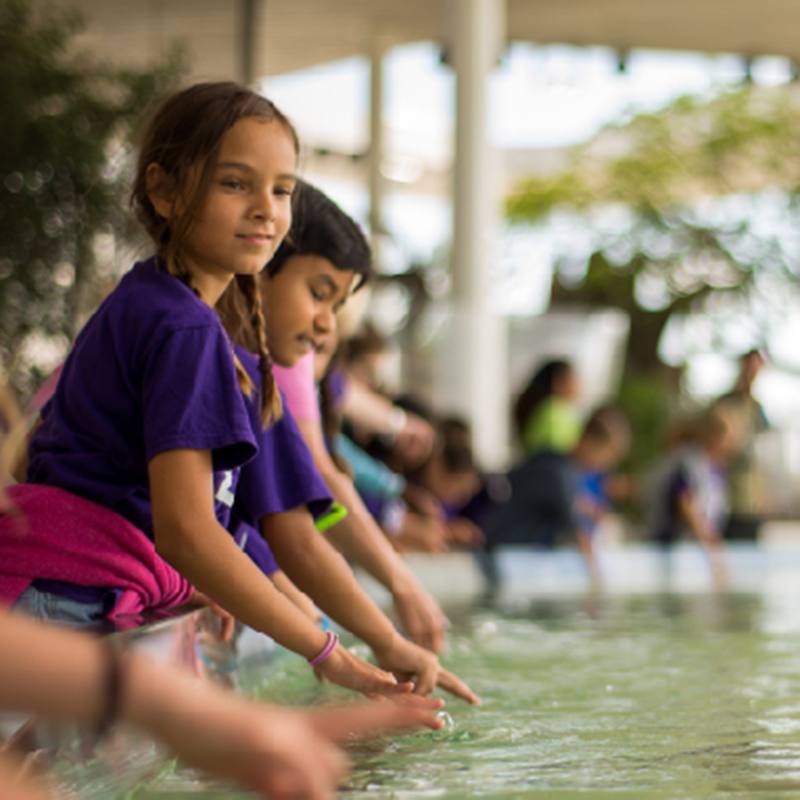Two Children Playing with Water in the Stingray Tank