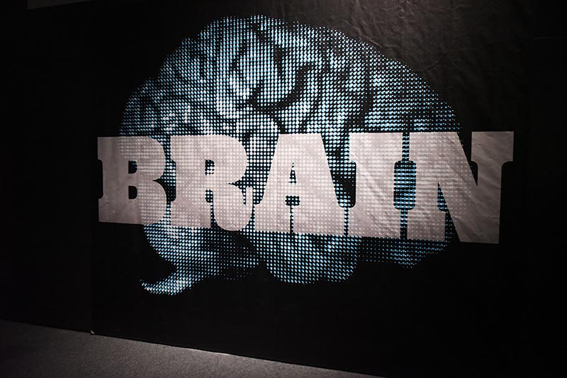 Brain: The Inside Story exhibit sign.