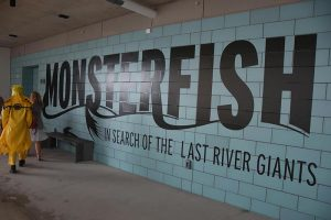 monster-fish-signage