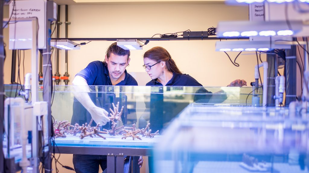 inventors in residence lab work with reef restoration