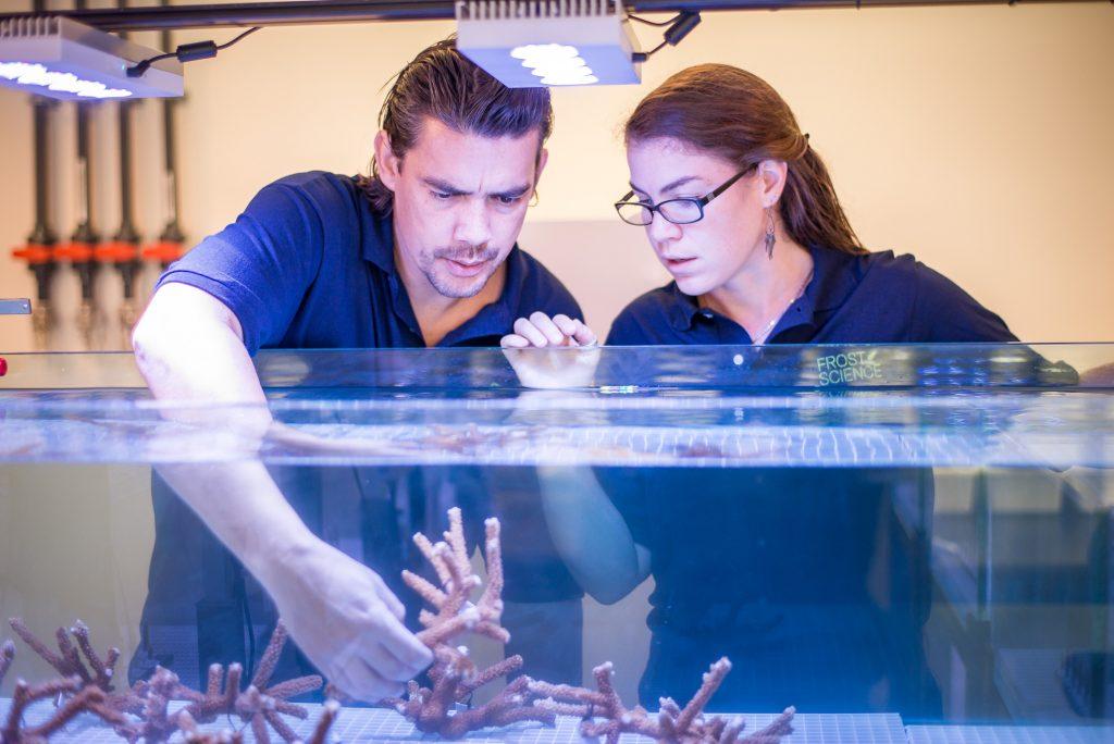 corals-inventors