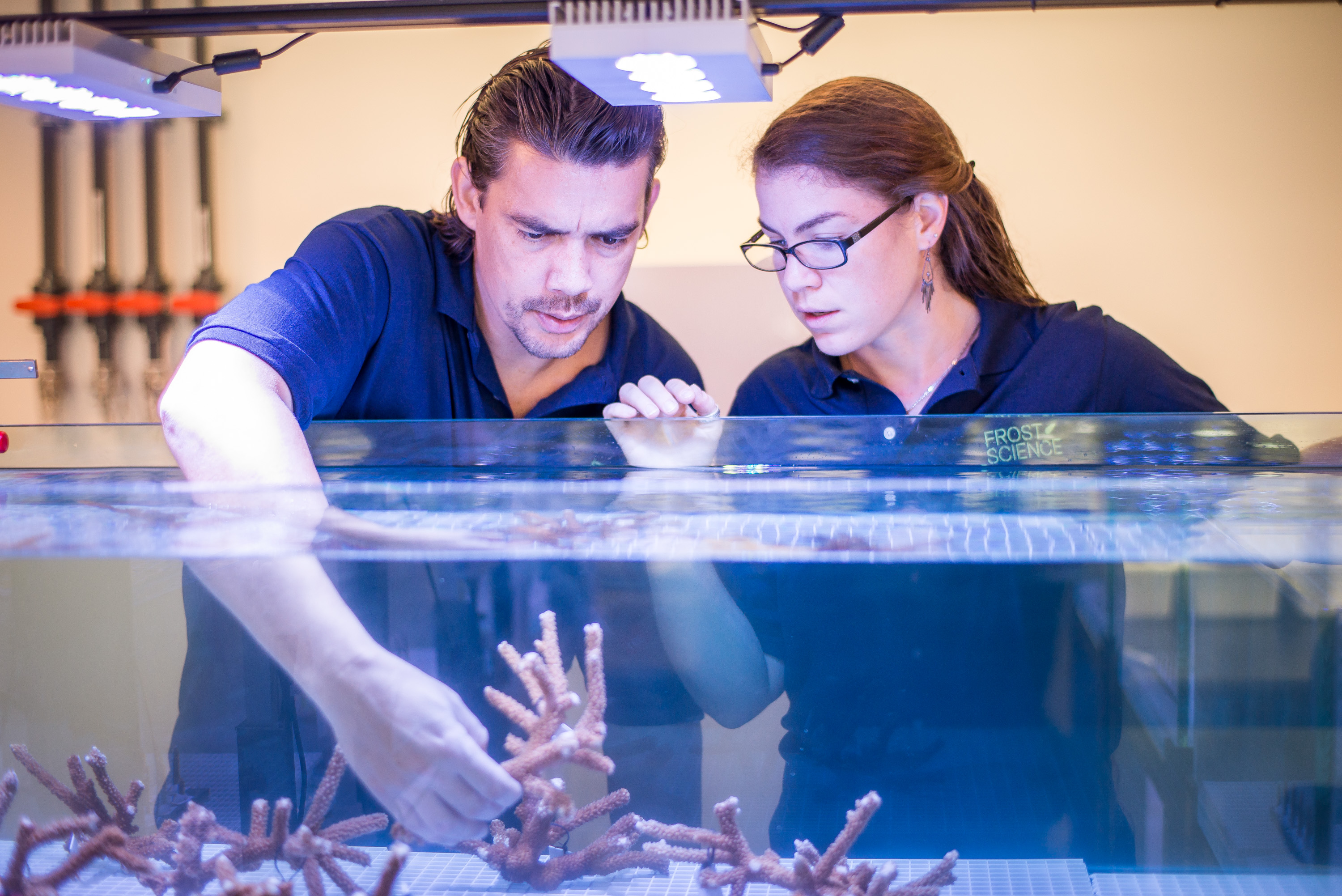 They want to make corals more climate-change resilient, visit them at the Inventors in Residence Lab