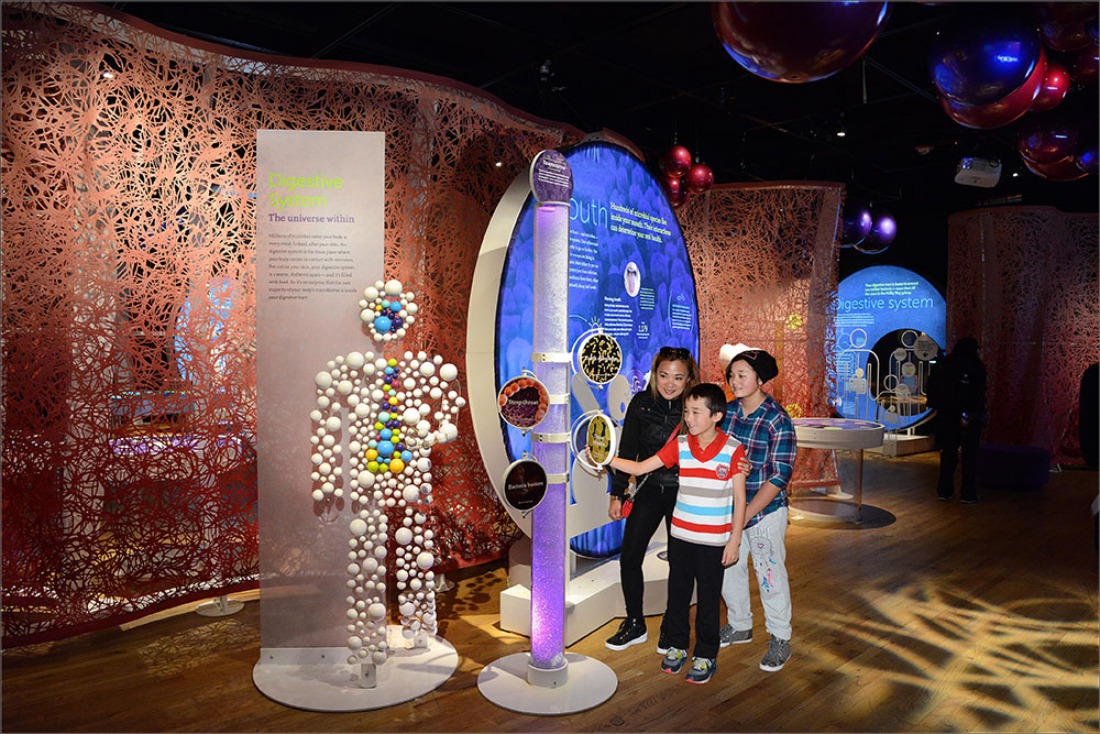 "Family exploring ""Secret World Inside You"" exhibit at Frost Science museum."