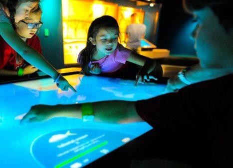 children learning on large tablet