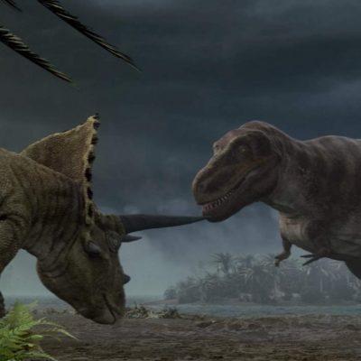 SUE the <em><strong>T. rex</strong></em>
