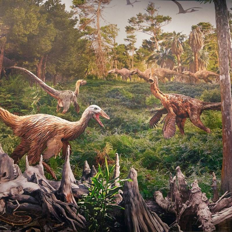 image of dinosaurs