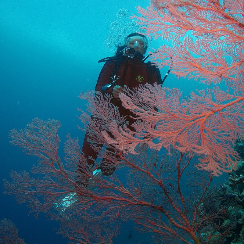 Power of Science Oceans