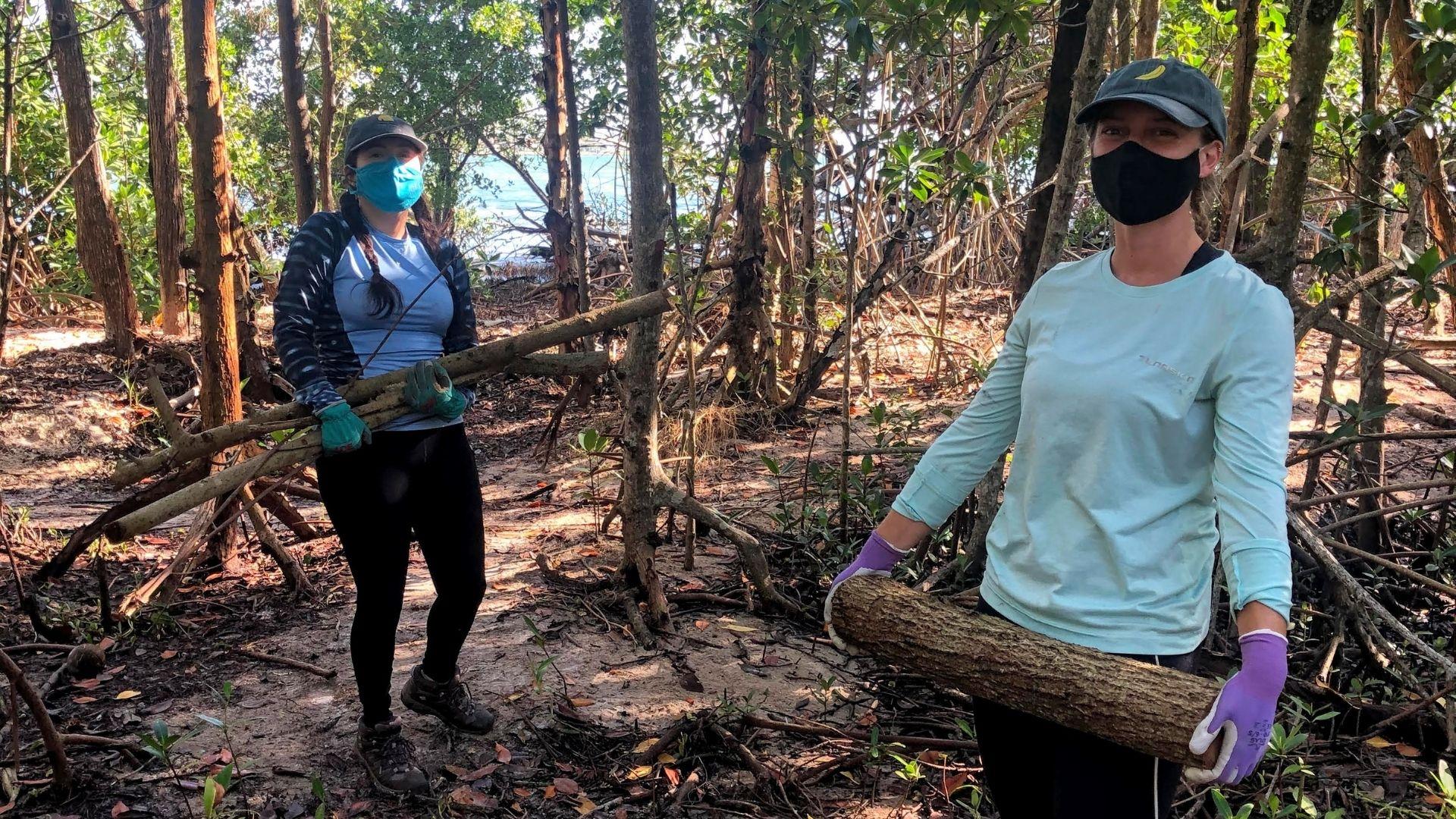 Muve program volunteers plant trees in Greynold Park in Miami Florida.