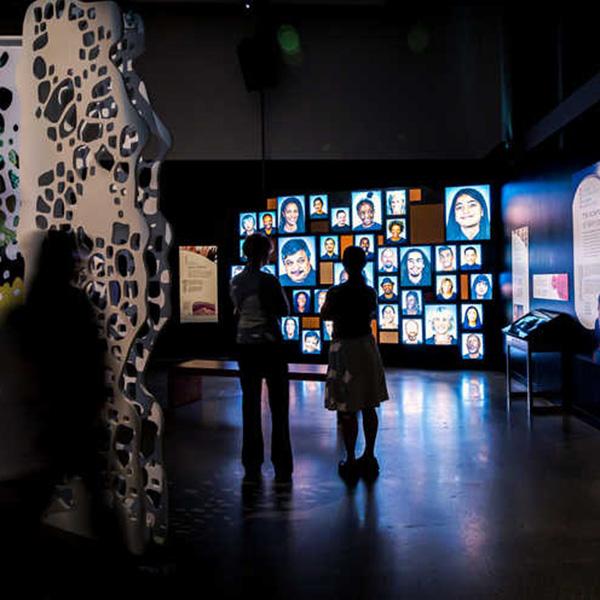 Photo of Skin: Living Armor, Evolving Identity exhibition.